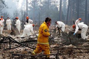 Thảm kịch cháy rừng California xóa sổ 'Thiên đường' khỏi bản đồ