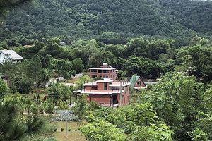 Chủ tịch Hà Nội: Công khai trách nhiệm vụ đất rừng Sóc Sơn trước Tết