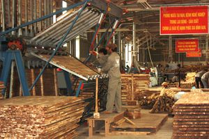 Tiêu thụ gỗ thị trường nội địa tăng mạnh