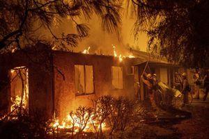 Số người thiệt mạng trong 'bão lửa' chết chóc nhất lịch sử California lên tới 48 người