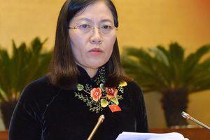 Chủ nhiệm Ủy ban Tư pháp 'đăng đàn' phản hồi tranh luận của Tổng Kiểm toán