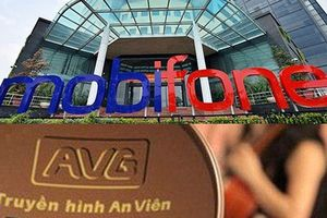 Điều tra mở rộng thương vụ AVG: Bắt thêm phó TGĐ và nguyên TGĐ Mobifone