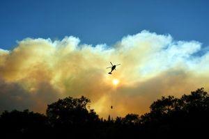 Thiệt hại do cháy rừng tại California tăng chóng mặt