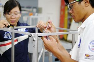 Số du học sinh Việt Nam tại Mỹ tăng năm thứ 17 liên tiếp