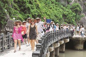 Doanh nghiệp du lịch hiến kế thu hút khách quốc tế