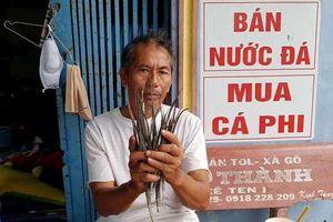 Cà Mau: Báo cáo vụ thương lái mua cá 'lìm kìm'