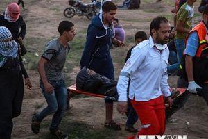 'HĐBA tê liệt trước tình trạng bạo lực leo thang tại Gaza'