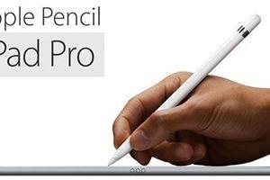 Apple Pencil 'lột xác' với những cải tiến mới nổi bật
