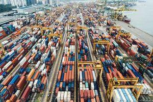 Nhập khẩu hàng hóa để thay đổi bao bì và xuất khẩu không được làm đổi bản chất, xuất xứ hàng hóa