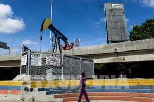 Giá dầu ngọt nhẹ mất hơn 7% do lo ngại nguồn cung dư thừa