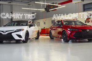 Toyota Camry và Avalon 2019 bản thể thao bất ngờ lộ diện