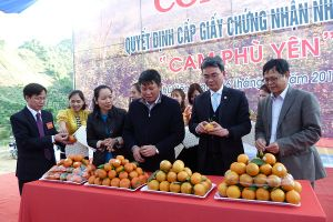Sơn La sẵn sàng cho Ngày hội cam và Ngày hội VH-TT các dân tộc huyện Phù Yên 2018
