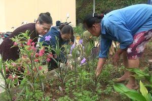 Trấn Yên (Yên Bái): Nỗ lực thực hiện tiêu chí môi trường