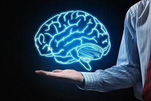9 sự thật thú vị về bộ não có thể bạn chưa biết