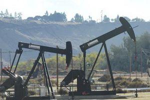 Giá dầu thế giới xuống mức thấp nhất trong vòng một năm