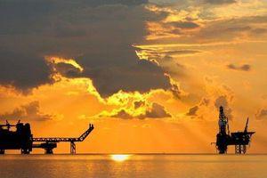 Cú đảo chiều chóng mặt trong 6 tuần của giá dầu đã diễn ra thế nào?
