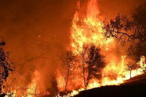 'Bão lửa' thảm khốc do cháy rừng tại bang California (Mỹ)