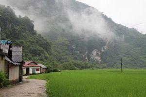 Thái Nguyên: Ai đang 'bao sân' cho doanh nghiệp đào vàng?