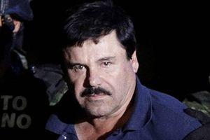 Trùm ma túy El Chapo hầu tòa tại Mỹ