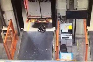 Tai nạn kinh hoàng: Xe tải lùi 'kẹp nát' công nhân