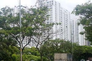 HoREA kiến nghị dẹp nạn 'loạn' danh xưng dự án bất động sản