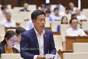 Đại biểu Quốc hội chỉ ra 2 điểm nghẽn của phân luồng học sinh