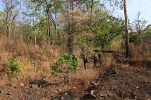 Không để người dân phá rừng lấy đất sản xuất