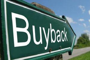 Infonet muốn mua 800.000 cổ phiếu quỹ trước khi hủy niêm yết trên HoSE