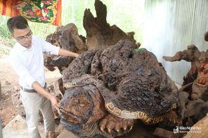 9X Nghệ An thu hàng trăm triệu nhờ biệt tài biến gốc cây thành những con vật ngộ nghĩnh