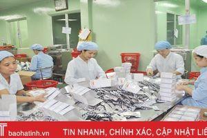 Hà Tĩnh thành lập mới 883 doanh nghiệp