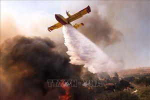 Hàng nghìn lính cứu hỏa dập 'giặc lửa' cháy rừng tại California