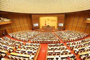 Hôm nay, Quốc hội biểu quyết một luật, cho ý kiến hai dự án luật