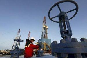 Giá dầu WTI tăng khá mạnh