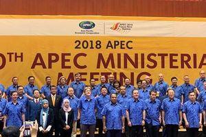 Các Bộ trưởng APEC thông qua Bộ Nguyên tắc xuyên suốt về Các biện pháp phi thuế quan