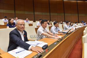 Quốc hội biểu quyết thông qua Luật Bảo vệ bí mật nhà nước