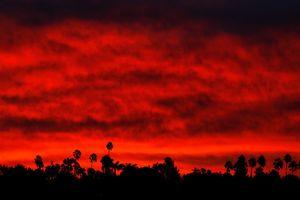 Hỏa hoạn ở California: Số người chết nhảy vọt lên 63, hơn 600 người vẫn mất tích