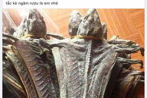 Cán bộ xã lên Facebook rao bán động vật hoang dã