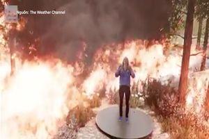 Dự báo thảm họa cháy rừng bằng công nghệ 3D