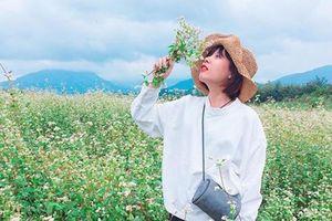 4 địa điểm lý tưởng ngắm hoa tam giác mạch ở Hà Giang