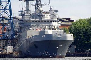 Nga thử nghiệm tàu đổ bộ đi quanh thế giới