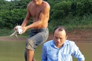 LẠ: Cho cá ăn tỏi, chữa được 2 bệnh, cá lớn vù vù, kiếm bộn tiền