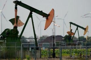 Giá dầu thế giới 16/11: Nga và OPEC tính chuyện giảm, giá dầu tiếp tục đi lên