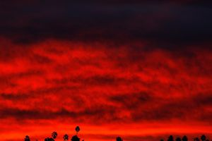 63 người chết, hơn 600 người mất tích trong cháy rừng California