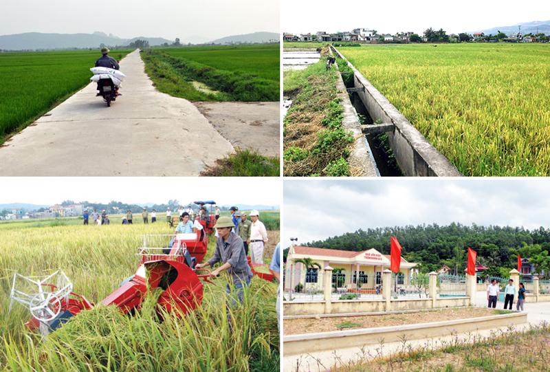 Phát triển bền vững thị trường tín dụng nông thôn