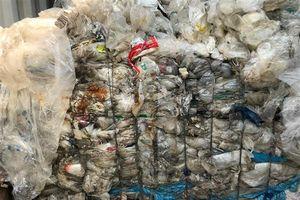 Đã kiểm tra được hơn 200 container phế liệu tồn