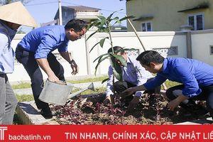 Tỉnh đoàn Hà Tĩnh trao tặng 200 cây xanh cho xã Thạch Tiến