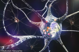 Phát hiện 'vũ khí' mới trong cuộc chiến chống bệnh Parkinson