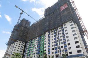 Công ty CP Lương thực TP.HCM: Giao đất công cho tư nhân xây cao ốc?