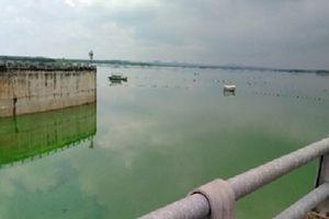 Bà Rịa - Vũng Tàu: Hồ chứa nước Sông Ray xuất hiện váng tảo màu xanh