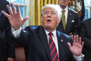 Ông Trump cáo buộc cử tri đảng Dân chủ cải trang để gian lận bỏ phiếu